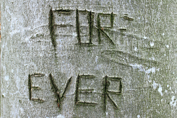 Tree-forever